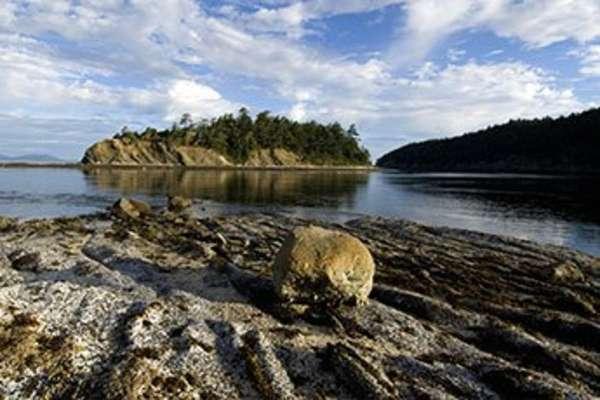 Sucia Island, Washington, USA