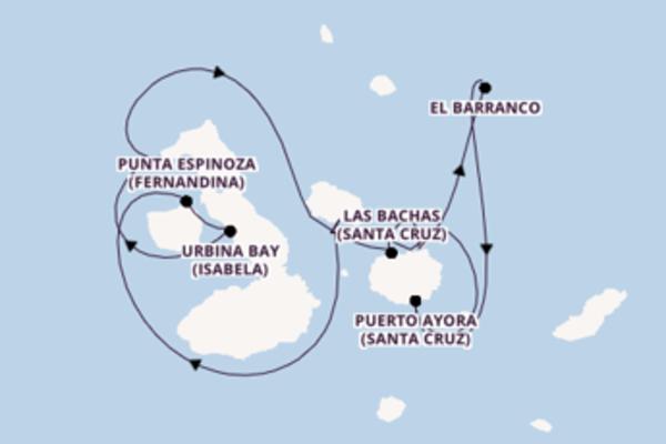 Maak een droomcruise naar Urbina Bay