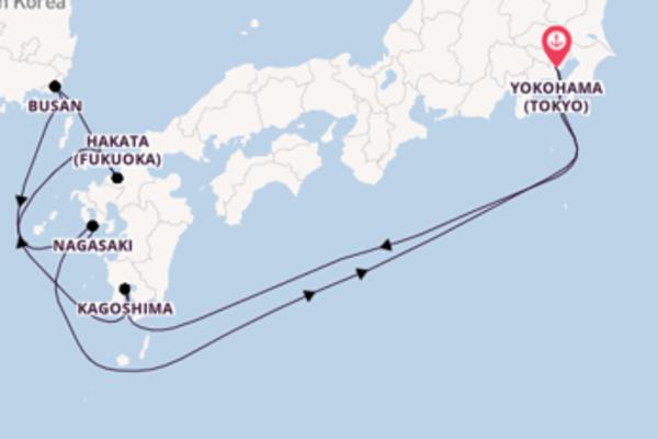 8 day trip from Yokohama (Tokyo)