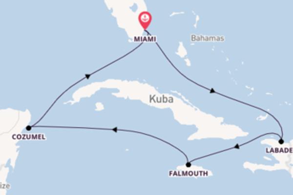 Erkunden Sie Cozumel ab Miami