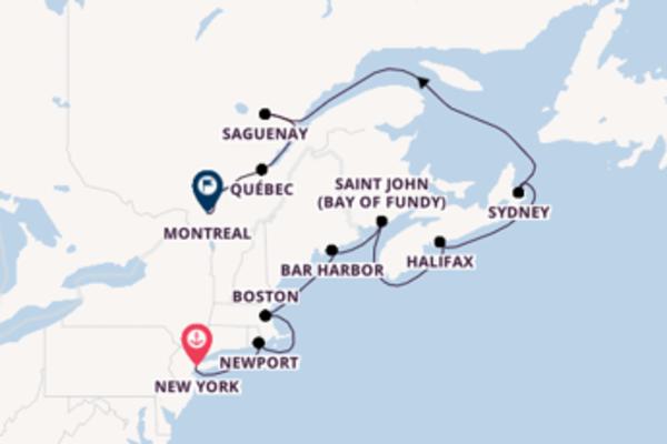 Ervaar het fenomenale Saint John (Bay of Fundy)