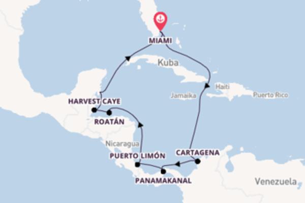 Genießen Sie 12 Tage Cartagena und Miami