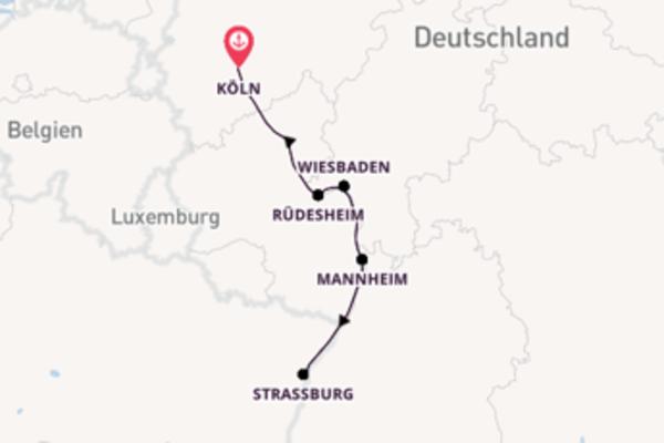 Märchenhafter Rhein