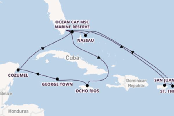 Vaar met het MSC Meraviglia naar Miami