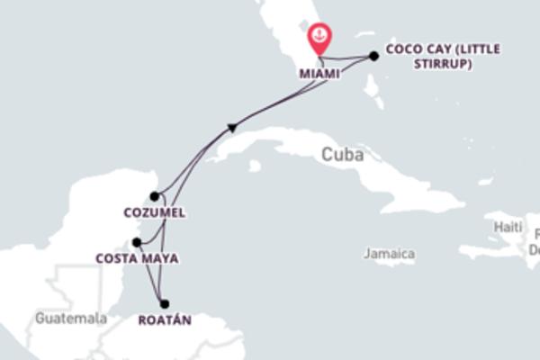 Empolgante viagem de 8 dias até Miami