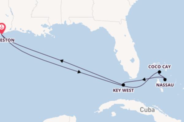 Coco Cay verkennen met de Jewel of the Seas®