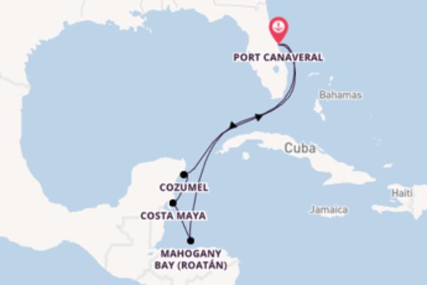 Bela viagem com a Carnival Cruise Line