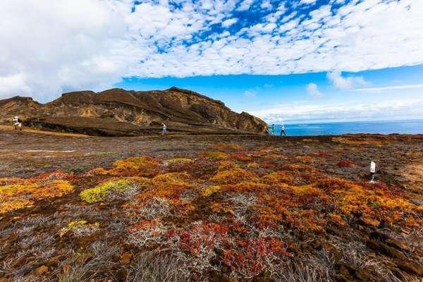 Punta Pitt, Galapagos Eilanden