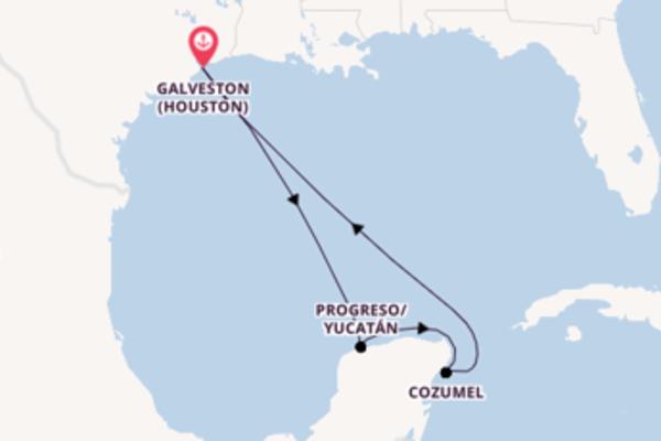 Erleben Sie Progreso/Yucatán ab Galveston (Houston)
