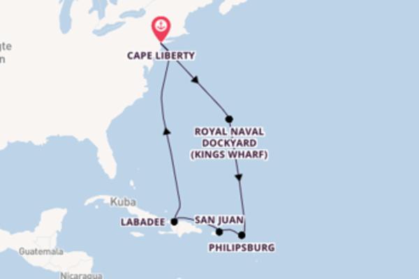 10 Tage auf der Adventure of the Seas verbringen
