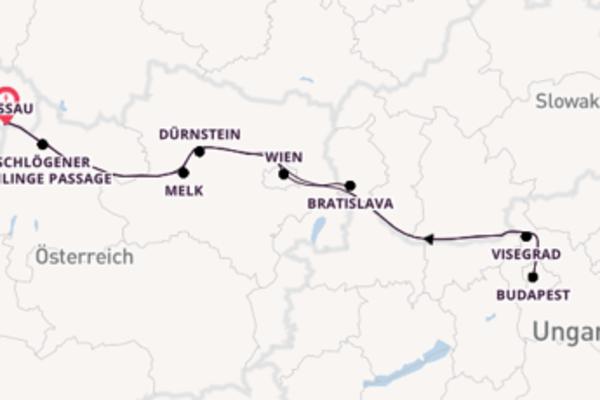 7 Tage Donauquartett