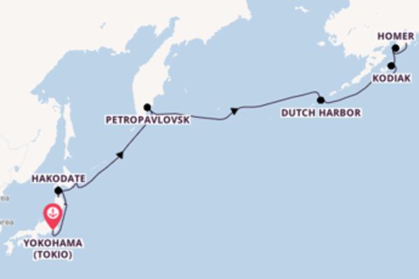 Yokohama (Tokio), Internationale Datumsgrenze und Seward erleben