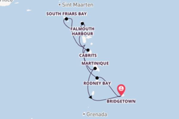 8-daagse reis aan boord van de Royal Clipper