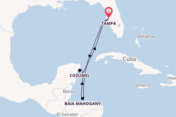 Lasciati affascinare da Mahogany Baia e Tampa