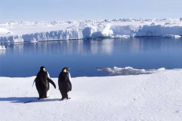 Пролив Герлаш, Антарктика