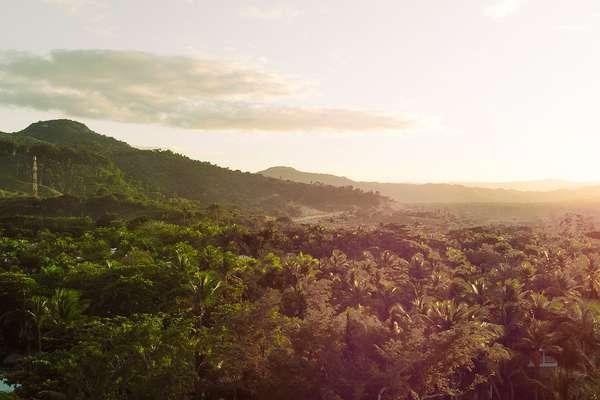 Dominican Daze