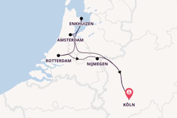 Blütenmeer in den Niederlanden ab/bis Köln