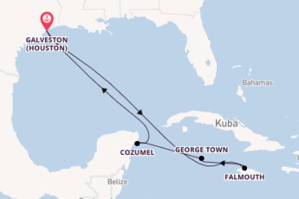 Großartige Kreuzfahrt über Falmouth nach Galveston (Houston)