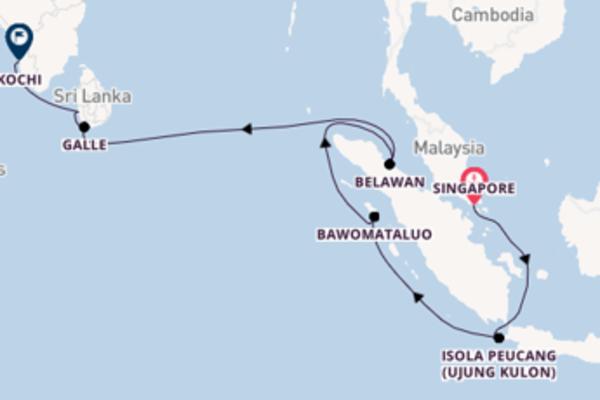Delizioso viaggio di 17 giorni verso Kochi