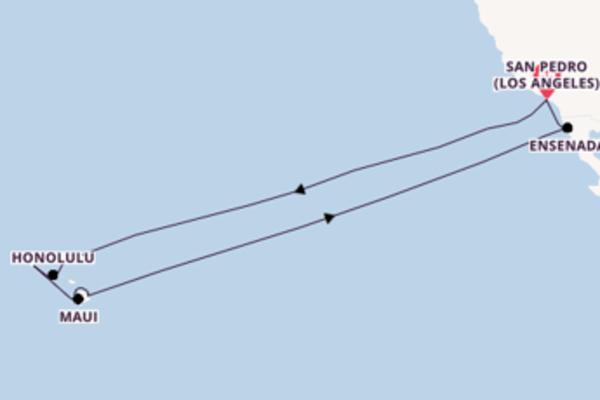 Viaggio di 16 giorni a bordo di Star Princess
