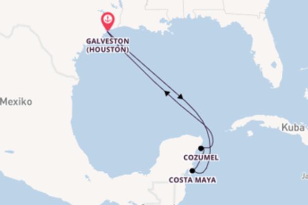 Großartige Kreuzfahrt über Costa Maya nach Galveston (Houston)
